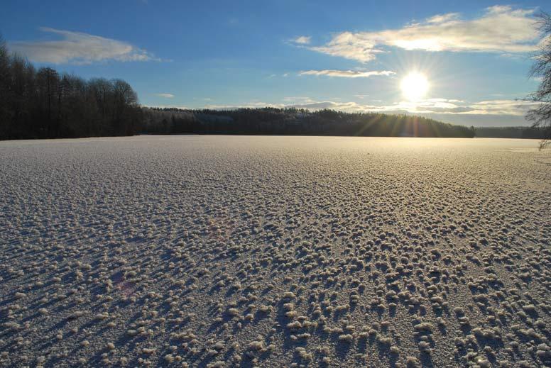 Hamarijärvi talvella
